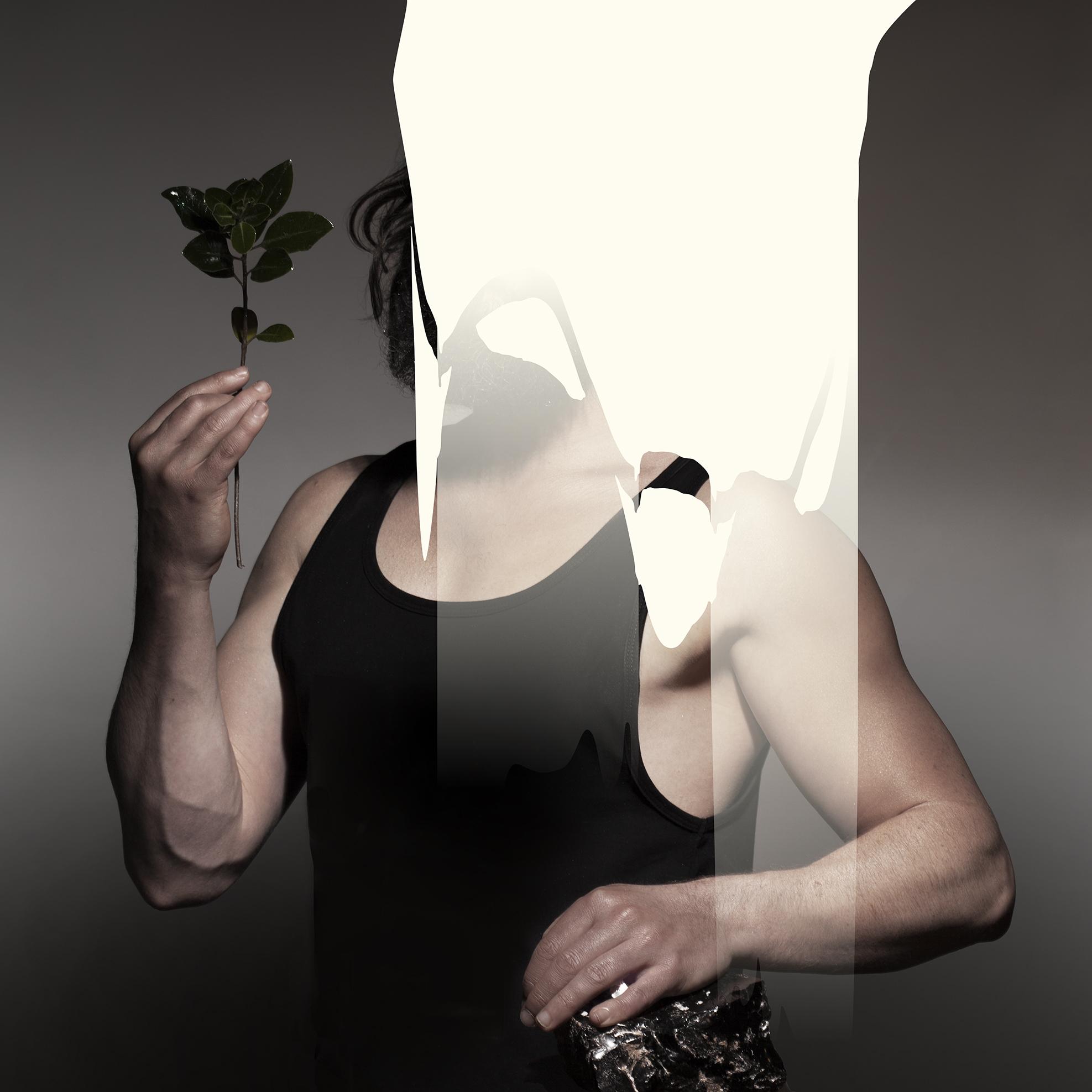 Zealandia (album cover artwork).jpg
