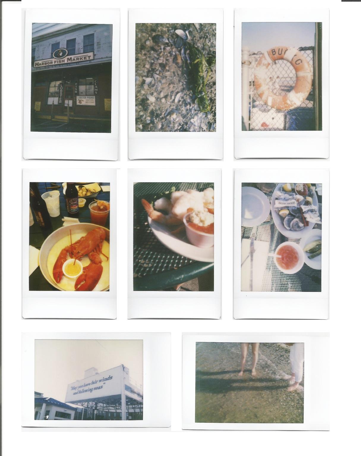 beachrose polaroids.jpg