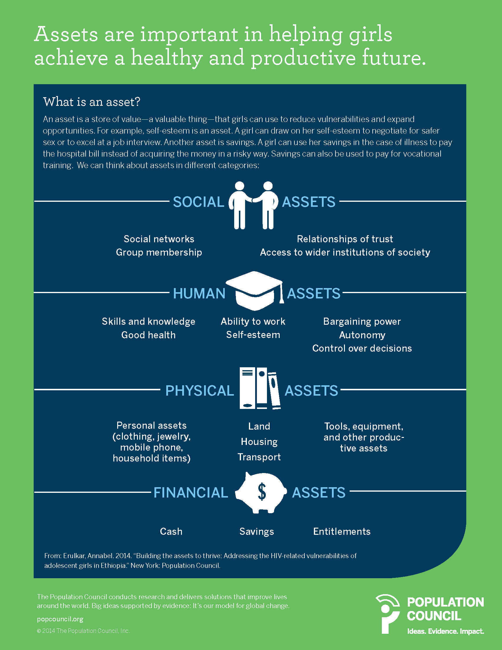 social assets diagram.png