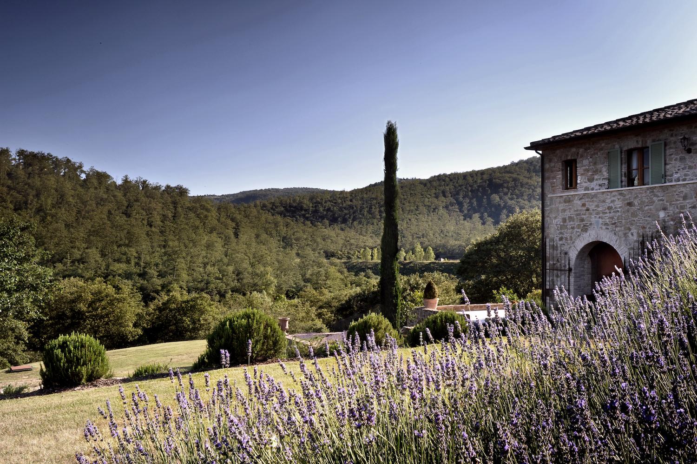 Castello di Reschio Piantaverna 01.jpg