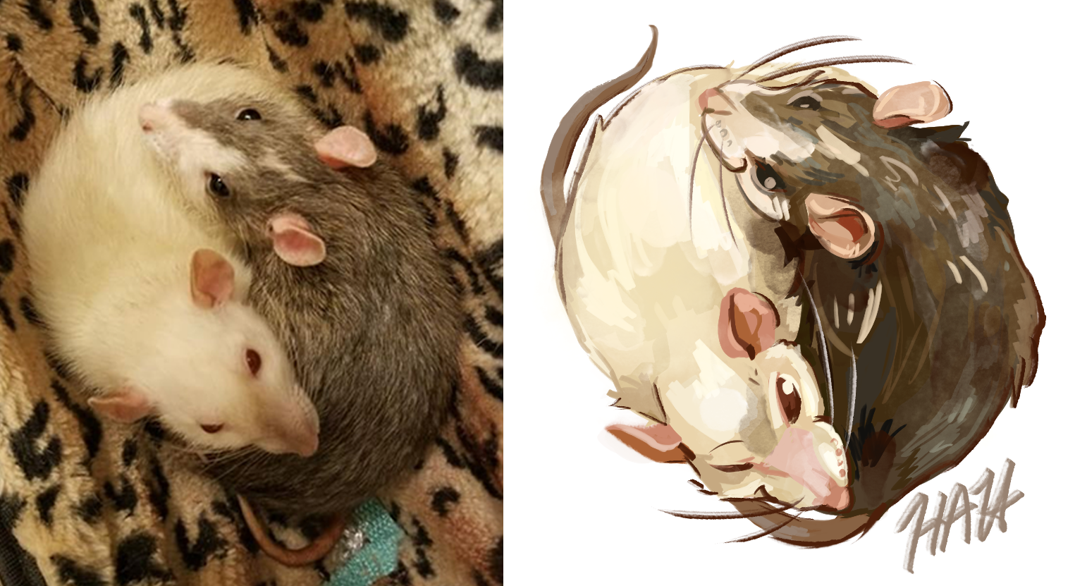 Rat Yin and Yang Commission