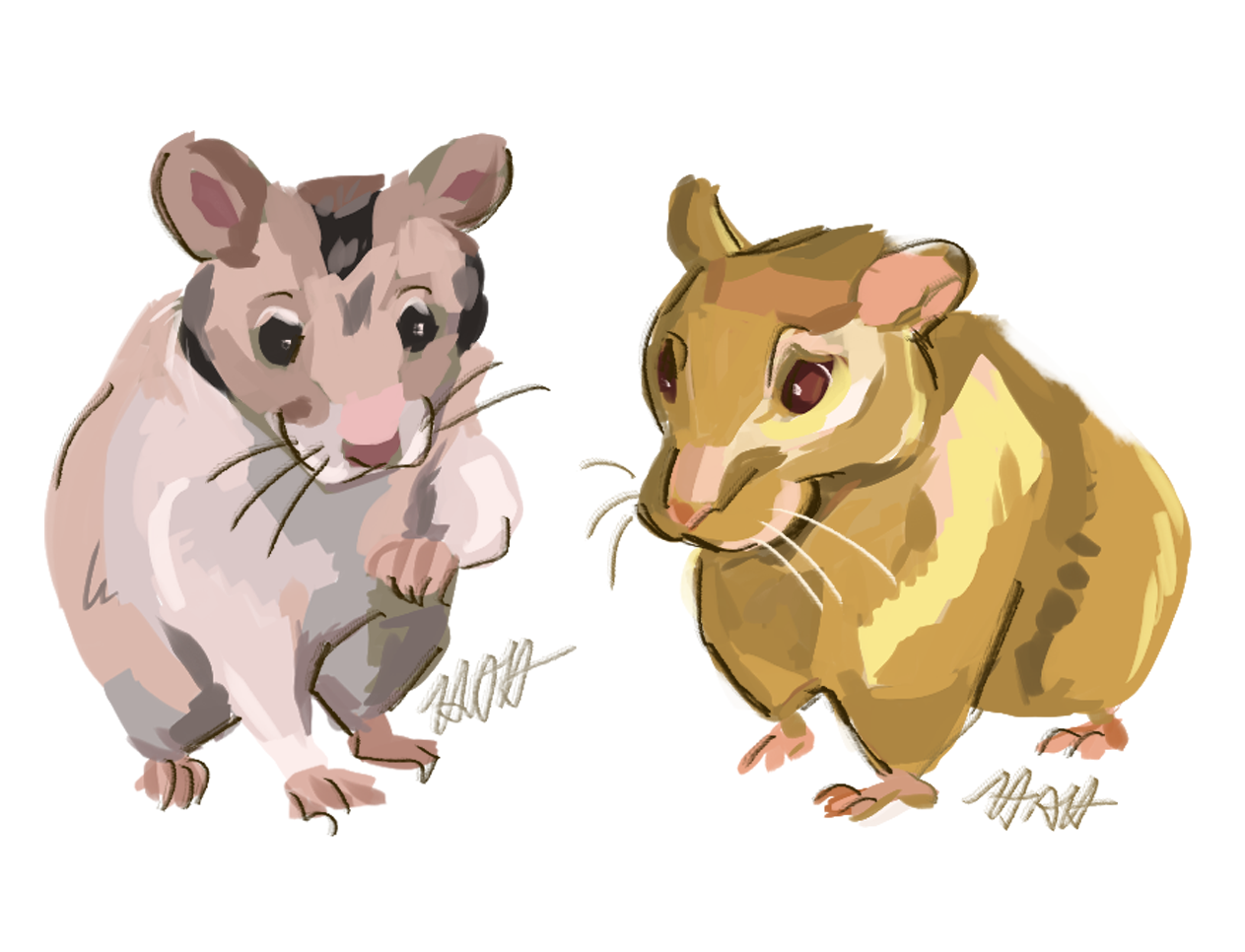 Hamsters commission