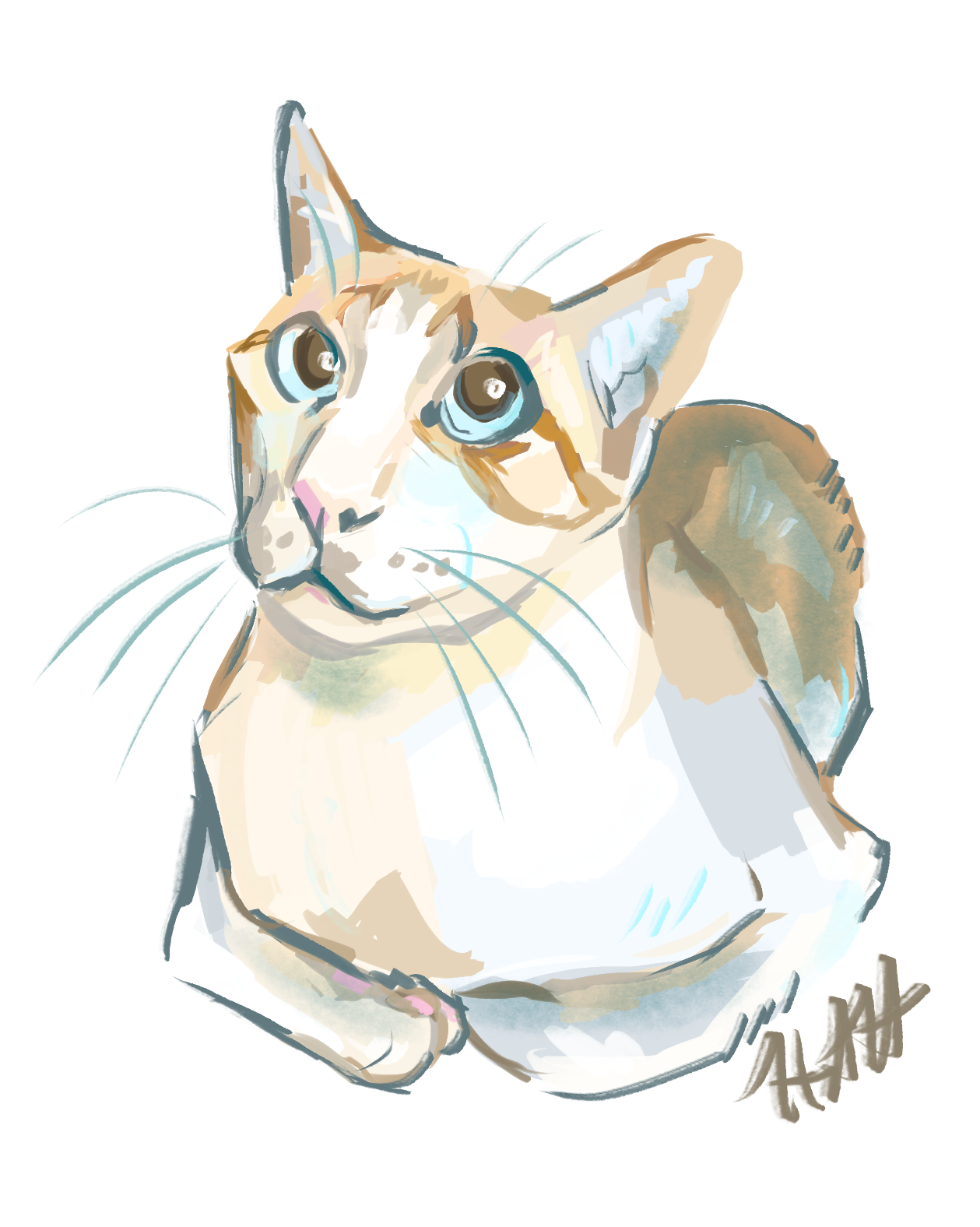 Sammy Cat Commission