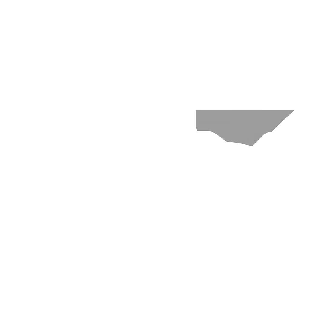 LEMON LOGO web.png