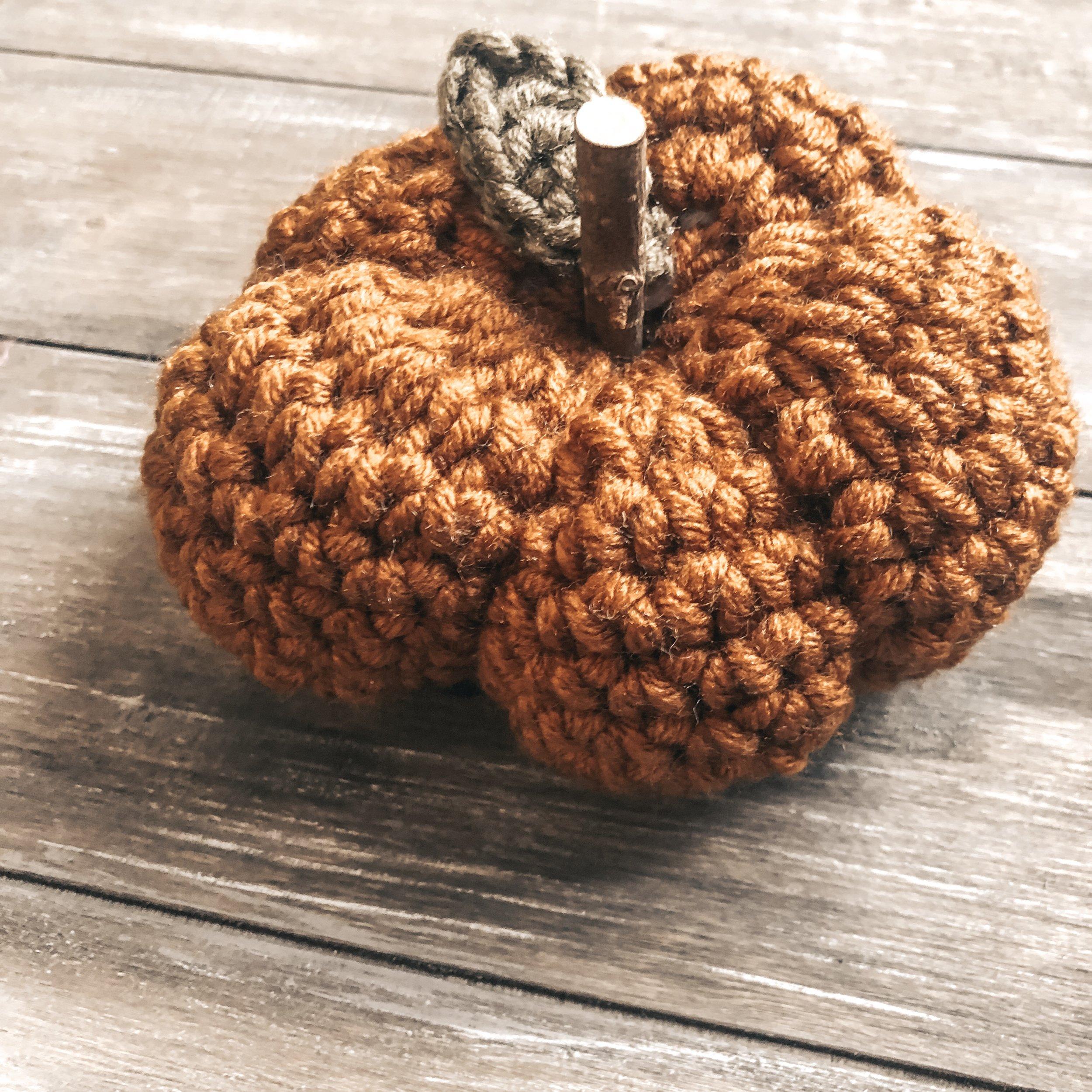 Kombucha pumpkin with Avocado leaf and a wooden stem