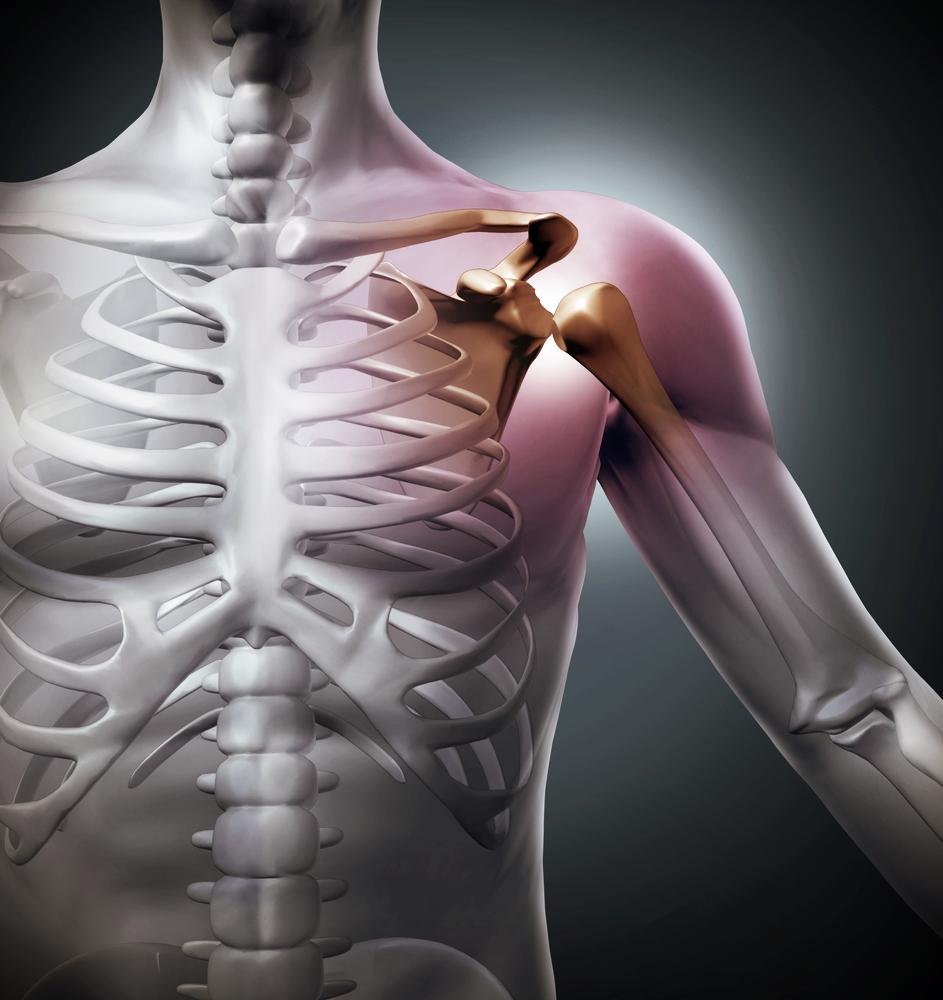 FYSIOTERAPIA TURKU - SSL on tuki- ja liikuntaelimistön sekä leikkauksen jälkeisen fysioterapian edelläkävijä. SSL:n fysioterapeuteilla on yli kymmenen vuoden kokemus erilaisten tuki- ja liikuntaelimistön ongelmien hoidosta. SSL:n fysioterapiaprosessi on aktiivista, ohjattua terapeuttista harjoittelua, joka suoritetaan ohjauskäynteinä SSL:n tiloissa, tai yksilöllisen kotiohjelman mukaan. Tavoitteemme on asiakaslähtöisesti tukea asiakkaan kuntoutusta ja yhdessä asiakkaan kanssa toteuttaa tehokas fysioterapiaprosessi.