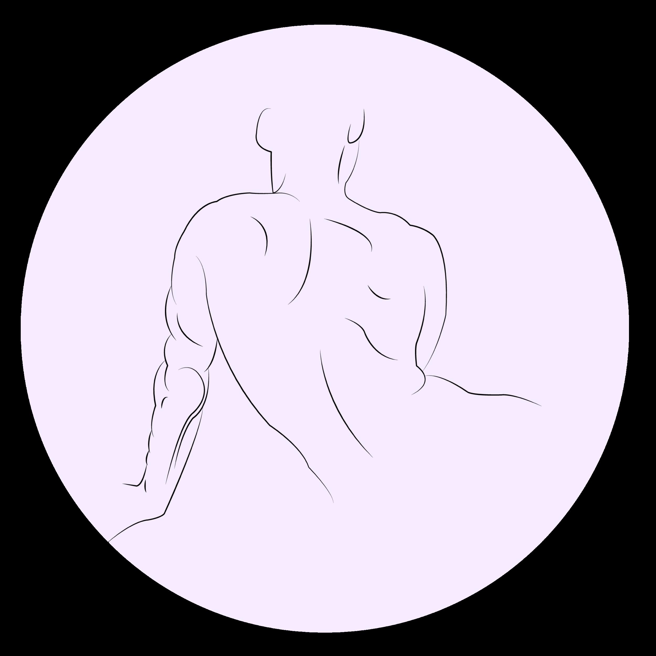 SpinalDrawing-01.png