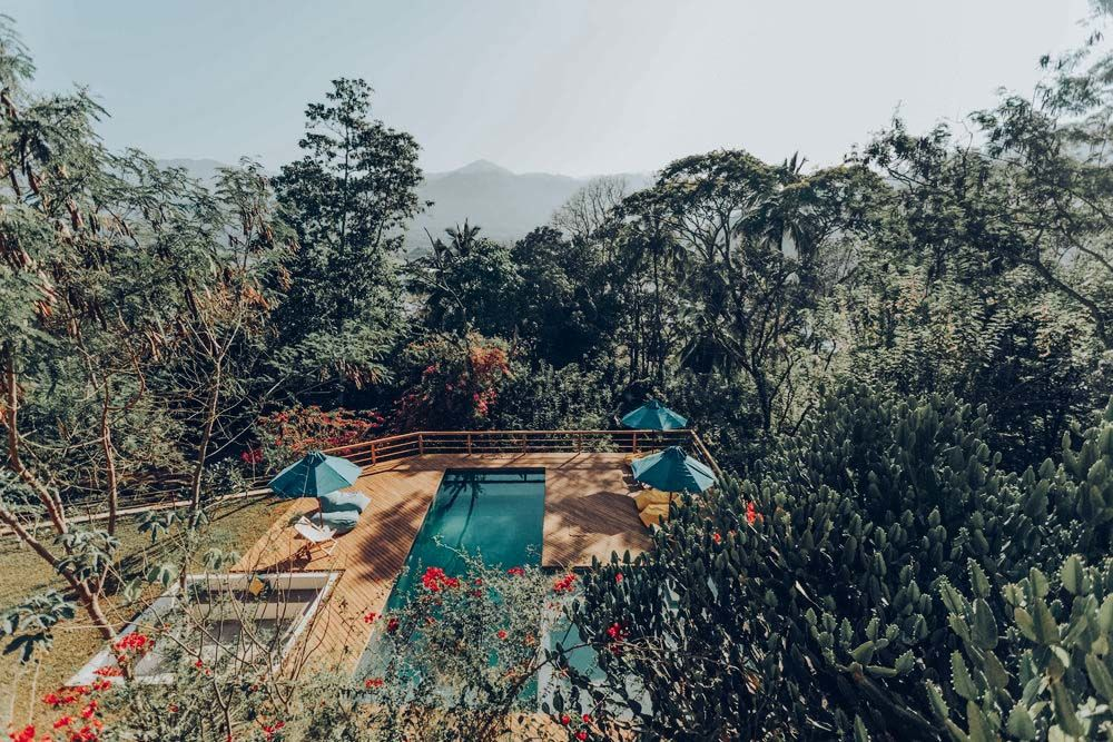 Relax_in_Jungles.jpg