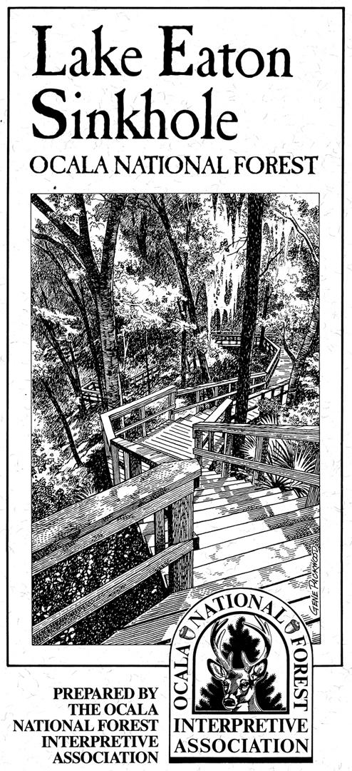 packwood-pamphlet.jpg