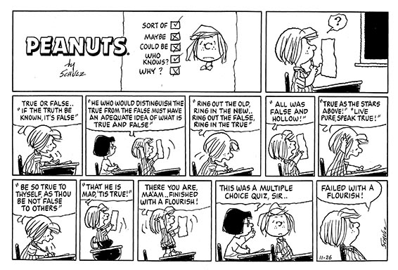 21-Peanuts-26-November-1995.-that-he-is-mad-tis-true-Ham-001.jpg