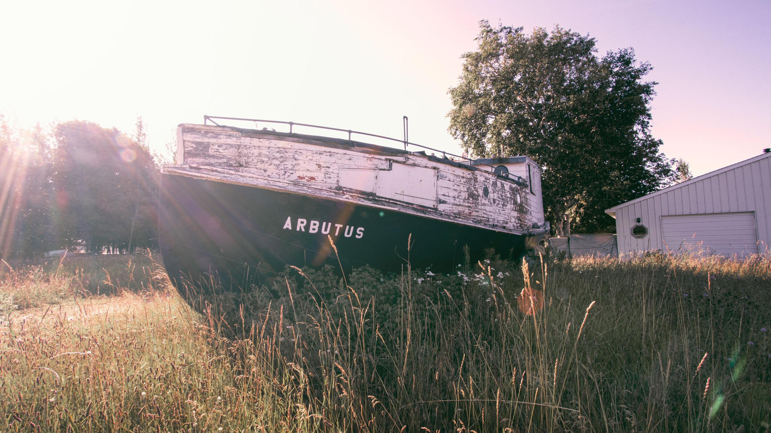 Arbutus, Grand Marais, Michigan, 08.20.2019