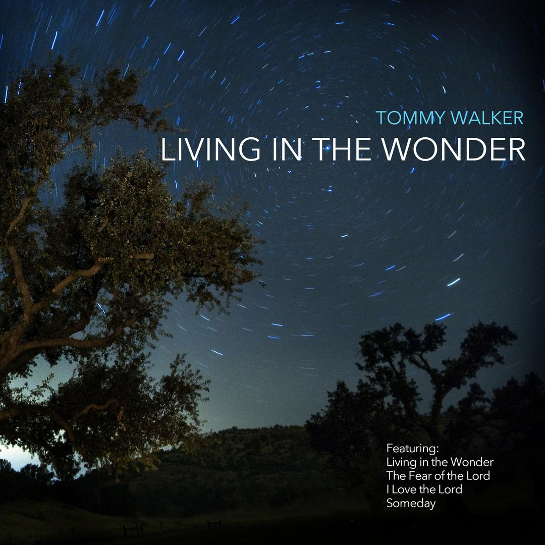 [FREE!] Living In The Wonder (2014)
