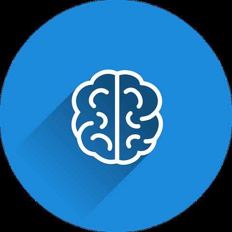 brain-2235771__480.png