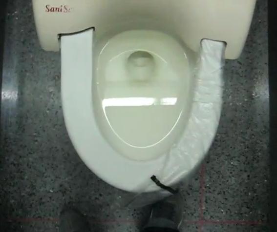 sani-seat