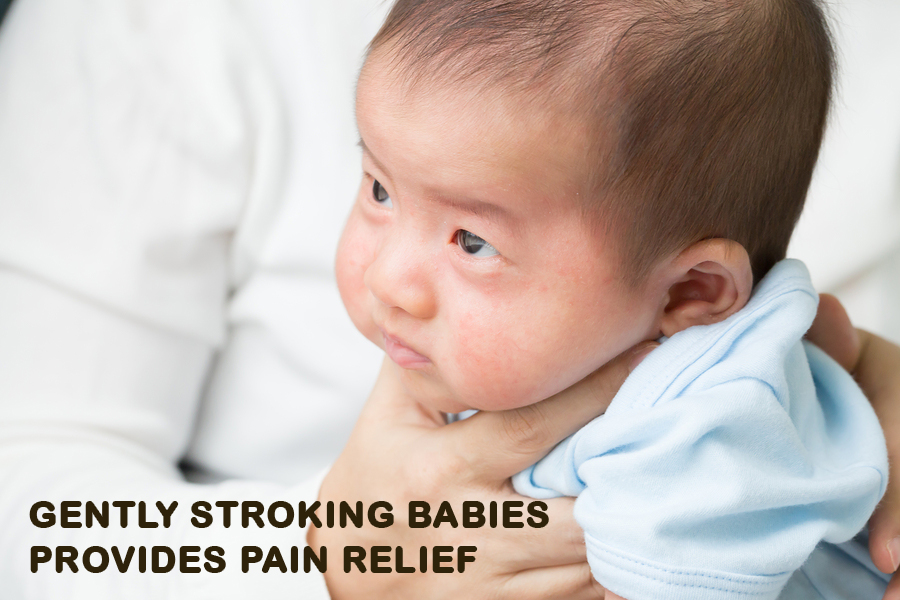 Gently stroking babies provides pain relief