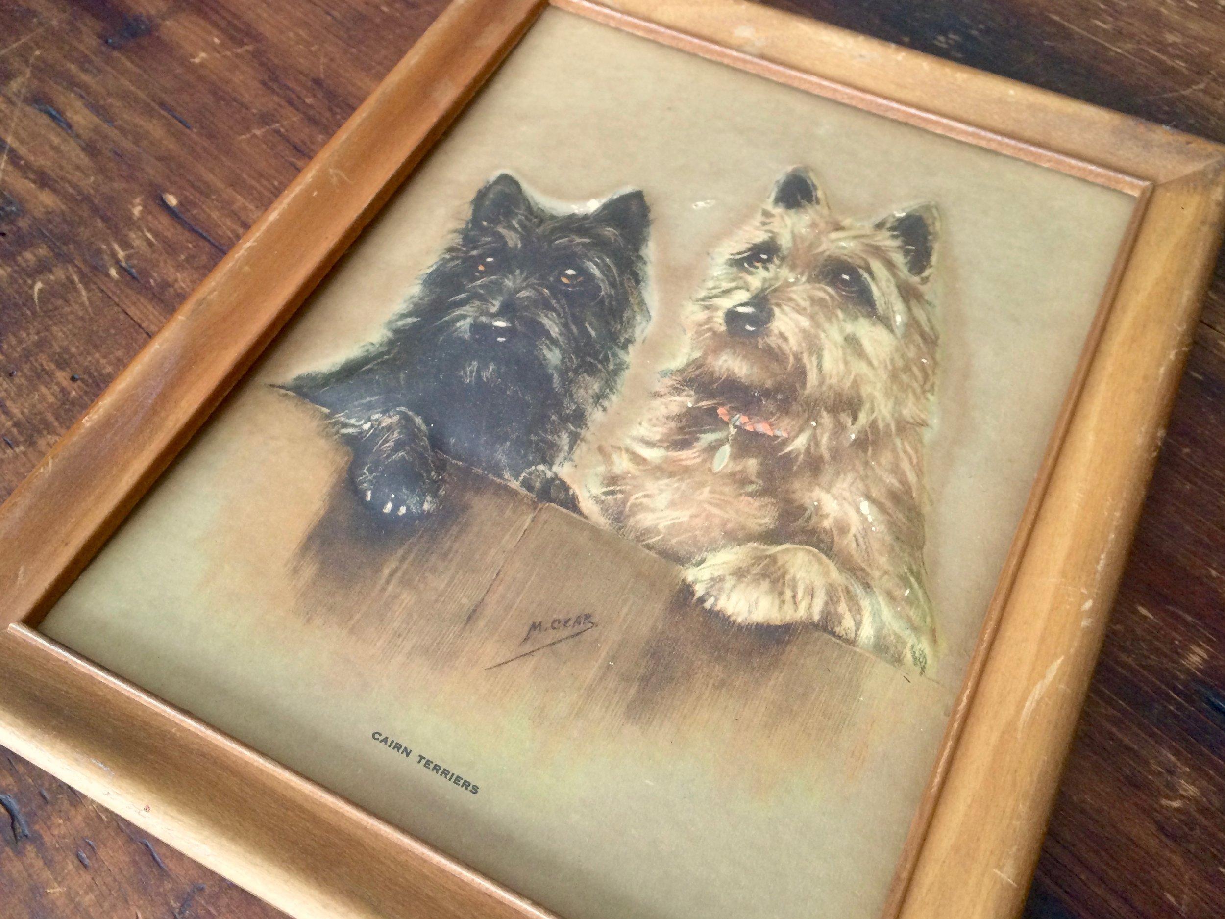 Cairn Terriers Embossed Print