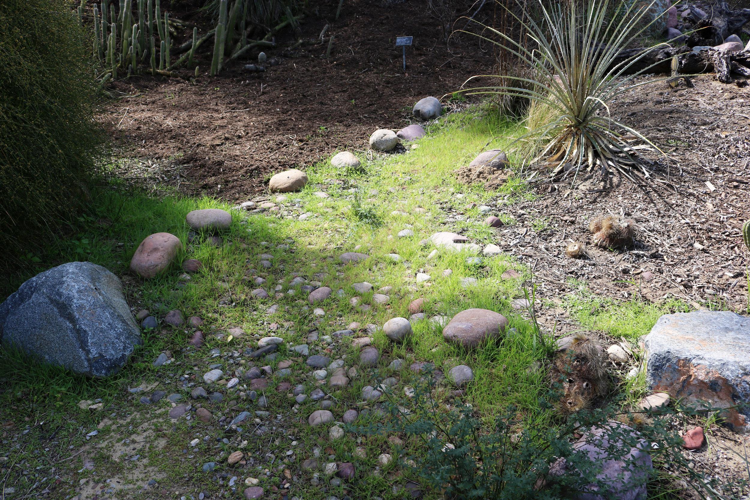 SD Botanic Garden- Kessler