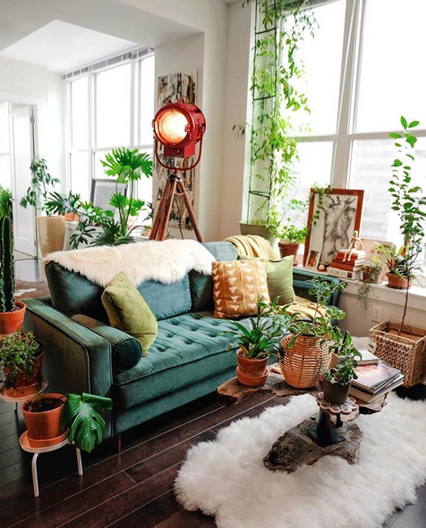 Lili also has a dream apartment filled with plants and eclectic furniture. Look at that couch!