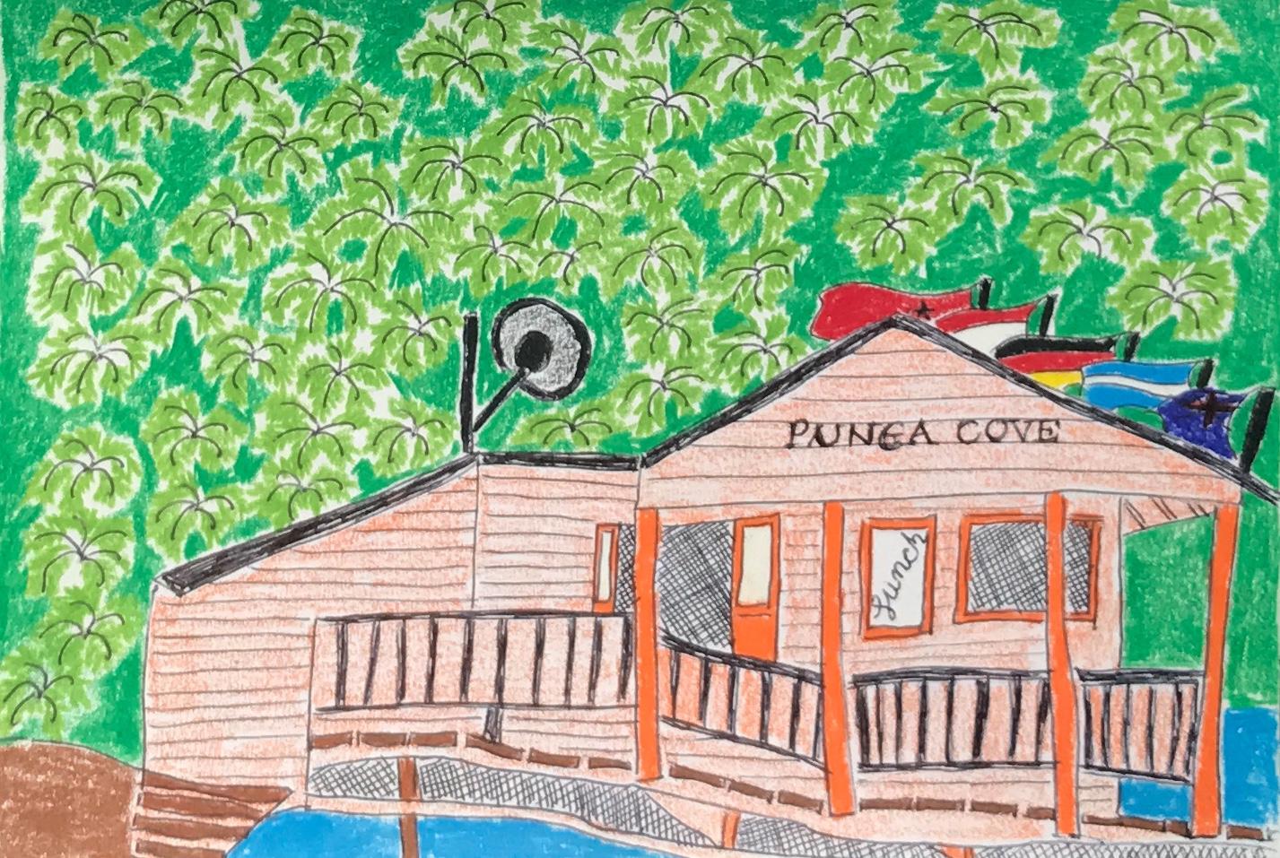 Punga cove cafe