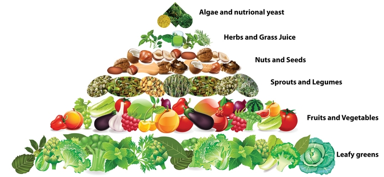 length of a raw foods therapeutic diet