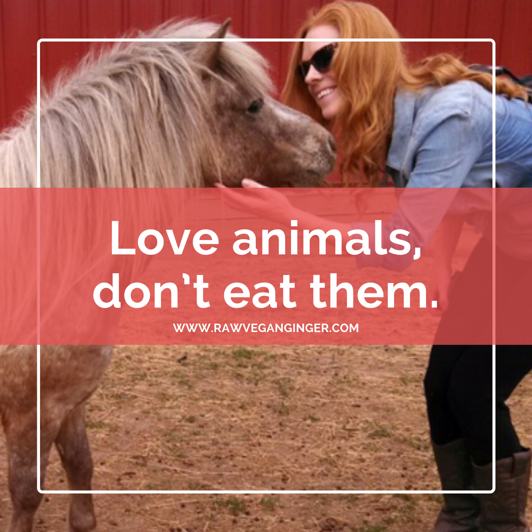 Love animals, don't eat them.png