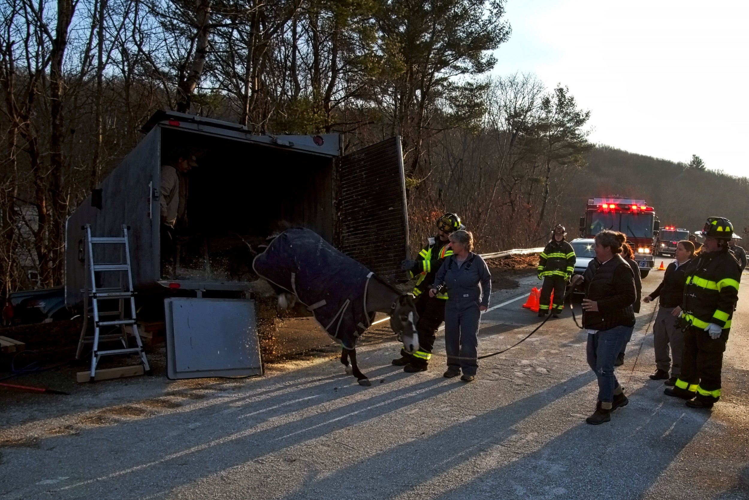 20190106_Waterford_Cohanzie_Quaker_Hill_Horse_Trailer_Rescue_Rt32_395_x0086v2.jpg