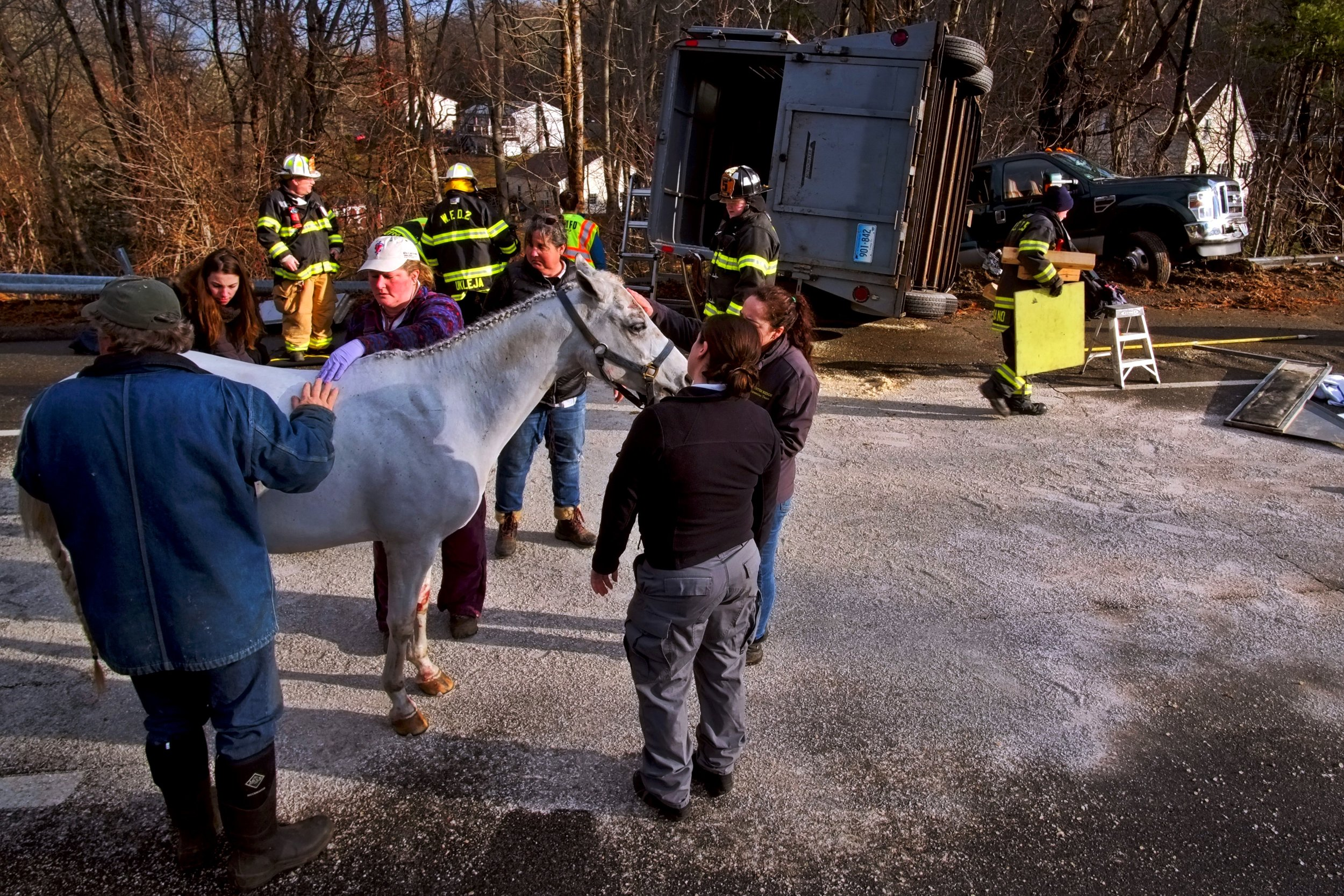 20190106_Waterford_Cohanzie_Quaker_Hill_Horse_Trailer_Rescue_Rt32_395_x0308v2.jpg
