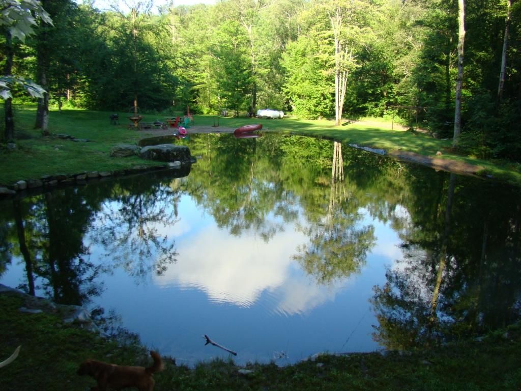 email pond.jpg