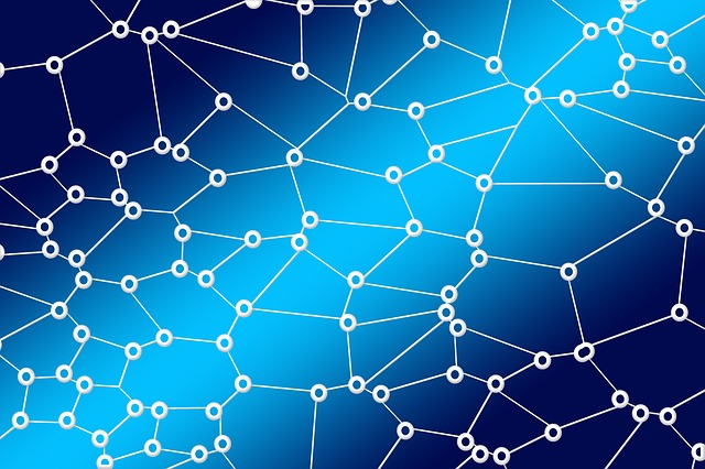 network-3139202_640.jpg