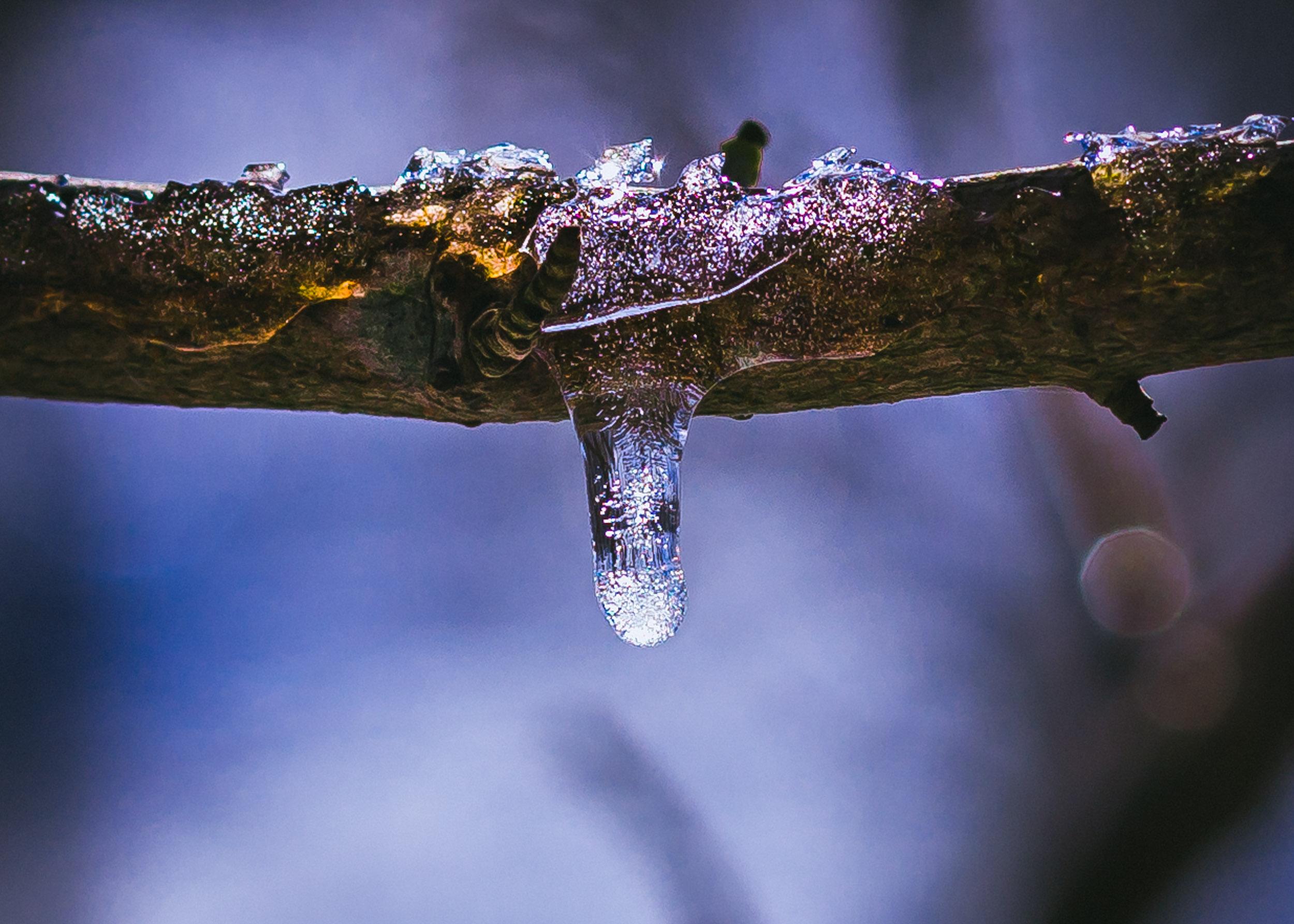 icedrop-1.JPG