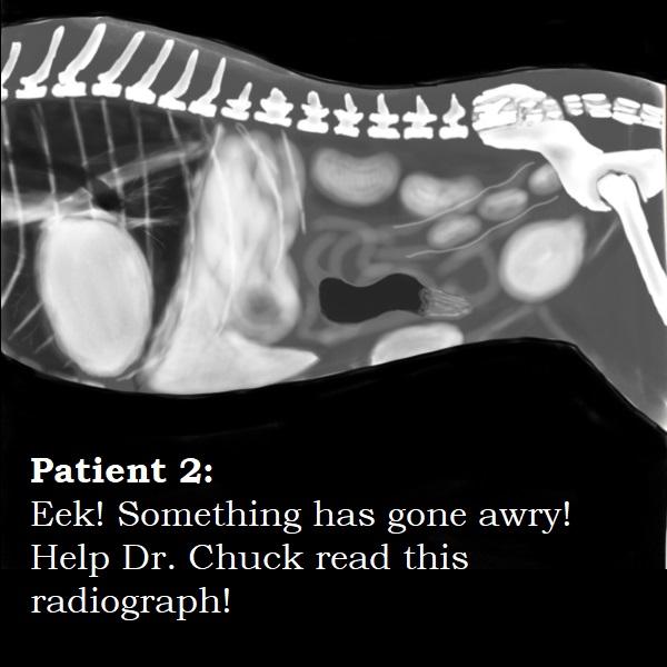 Patient 2.jpg