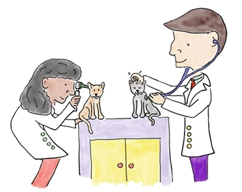 Click Here to learn all about the Physical Exam!