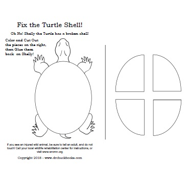 Click Here to download the Turtle Shell Repair Activity Sheet (Simple)