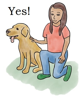 how to pet a dog.jpg