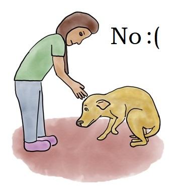 do not pet.jpg