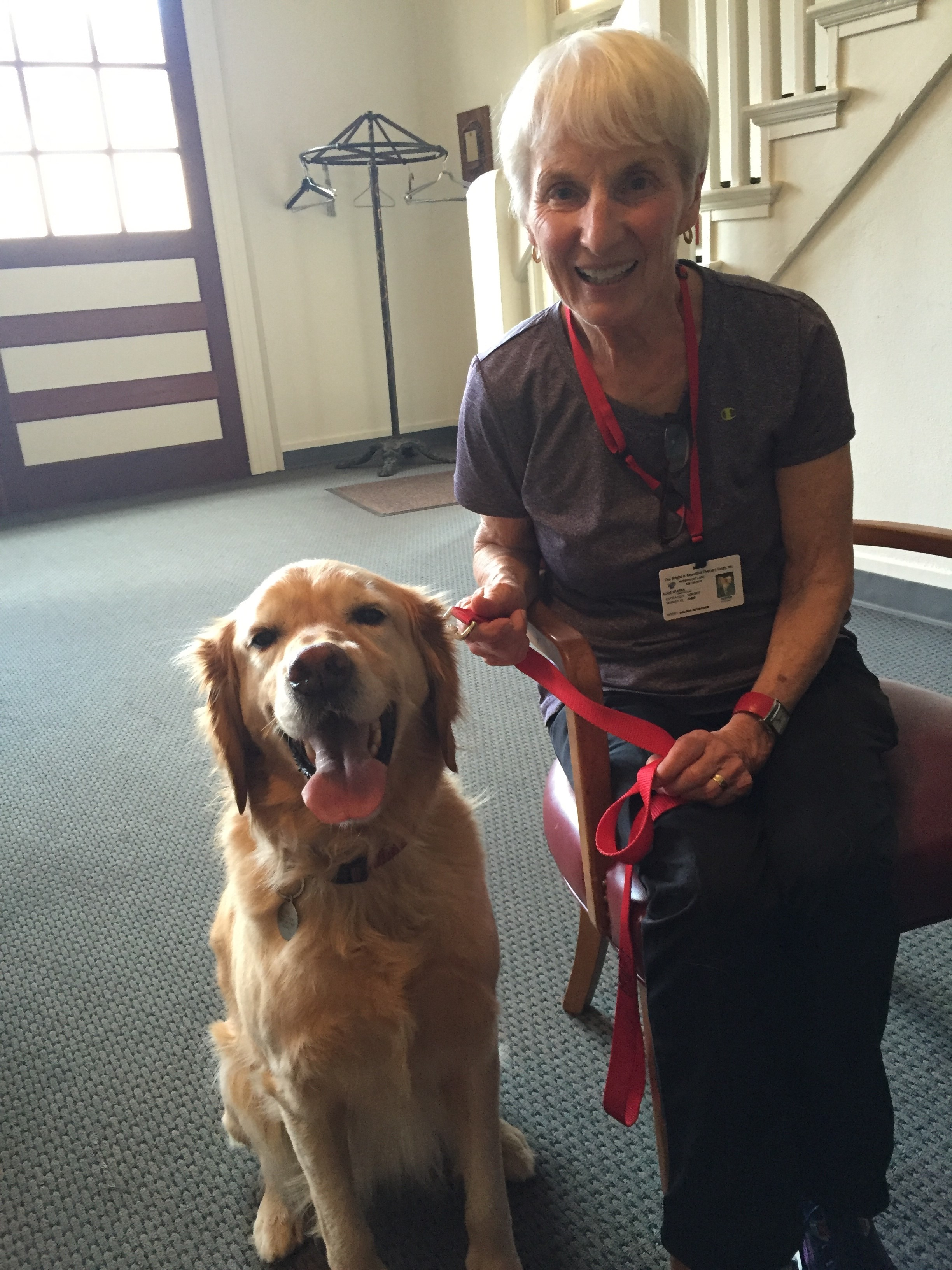Alice and Keeper - Alice Sparks and Keeper are both sweet, gentle, calm and friendly! Keeper is a 7 year old golden/lab mix.  Alice was an elementary school teacher for 40 years and they are interested in the literacy program and the court program.