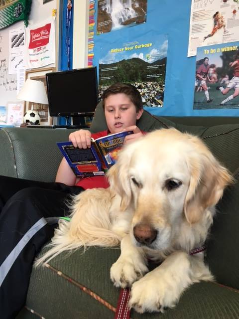 Improved Reading Literacy in Children - According toTufts Institute for Human-Animal Interaction