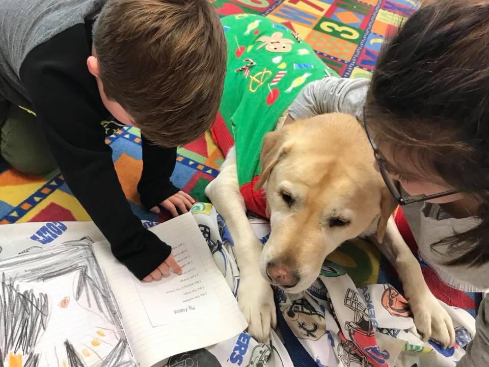 Improved Reading Aloud in Children - According toUCDavis School of Veterinary Medicine