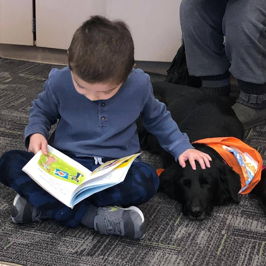 Improved Reading Skills in Children - According toThe Bark Dog Culture Magazine