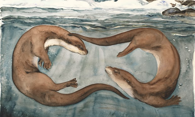 Otters from The Lost Words. Photograph: Jackie Morris.