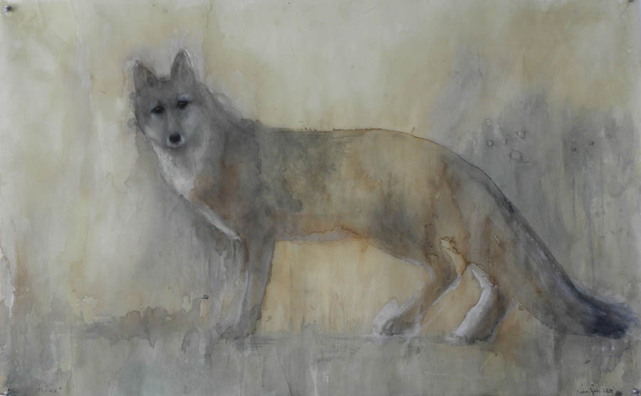 """""""Fox Dusk,"""" 2010 Korean watercolor, sumi-e ink, coffee and beeswax on Japanese paper 24 x 39"""