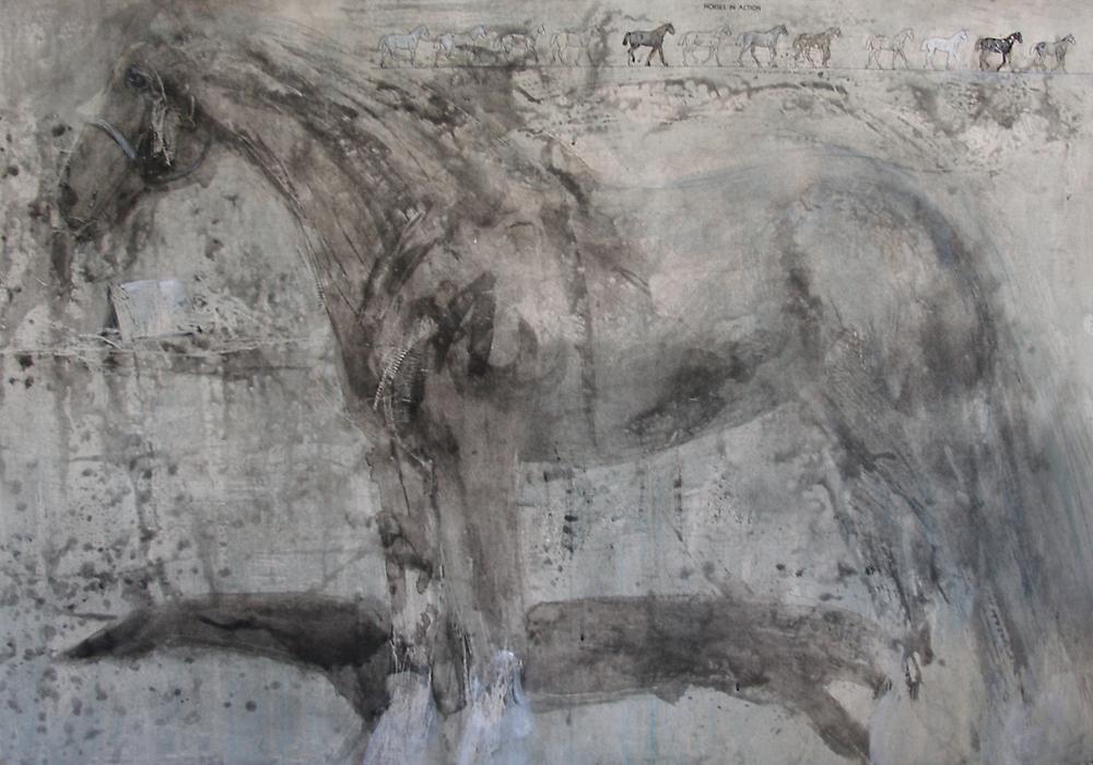 """Dapple Grey Spit Bite,"" 2009 Etching, edition of 10 31.5"" x 45"""