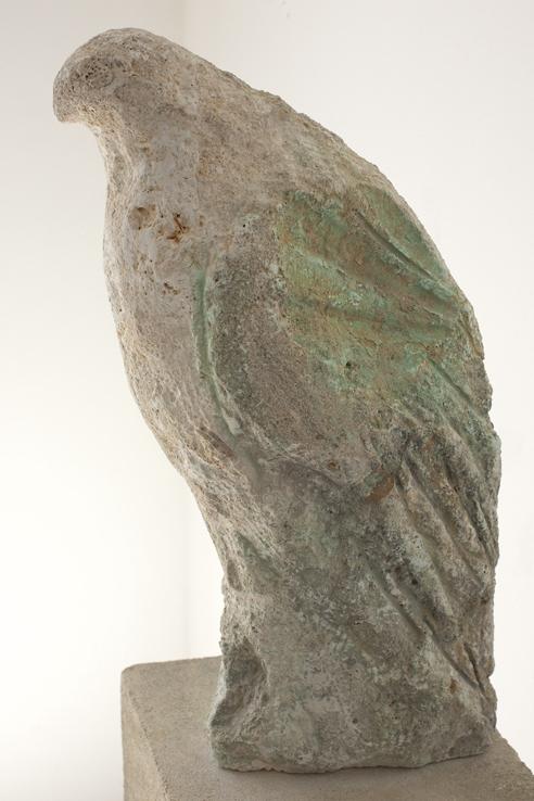 fossil_bird_close_up_smc-7456.jpg