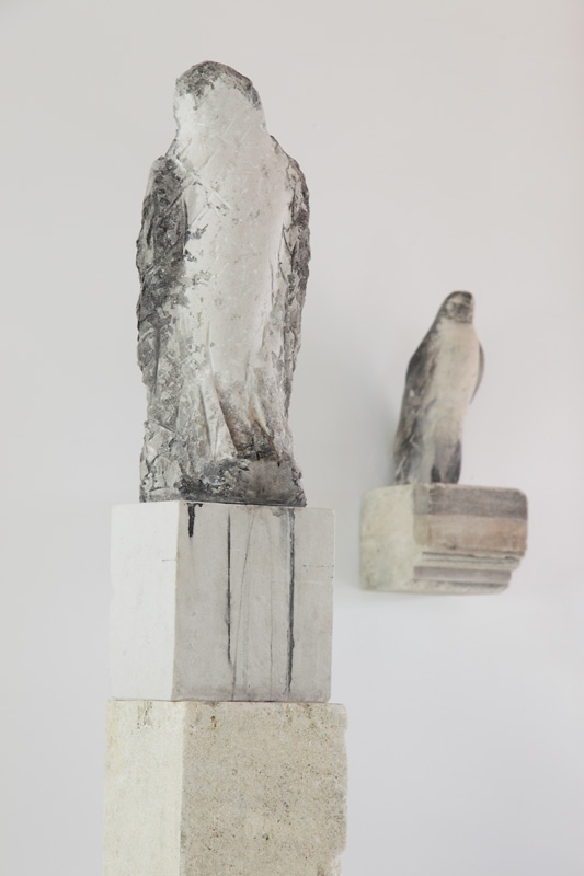 clocktower-birdisaw-detail.jpg