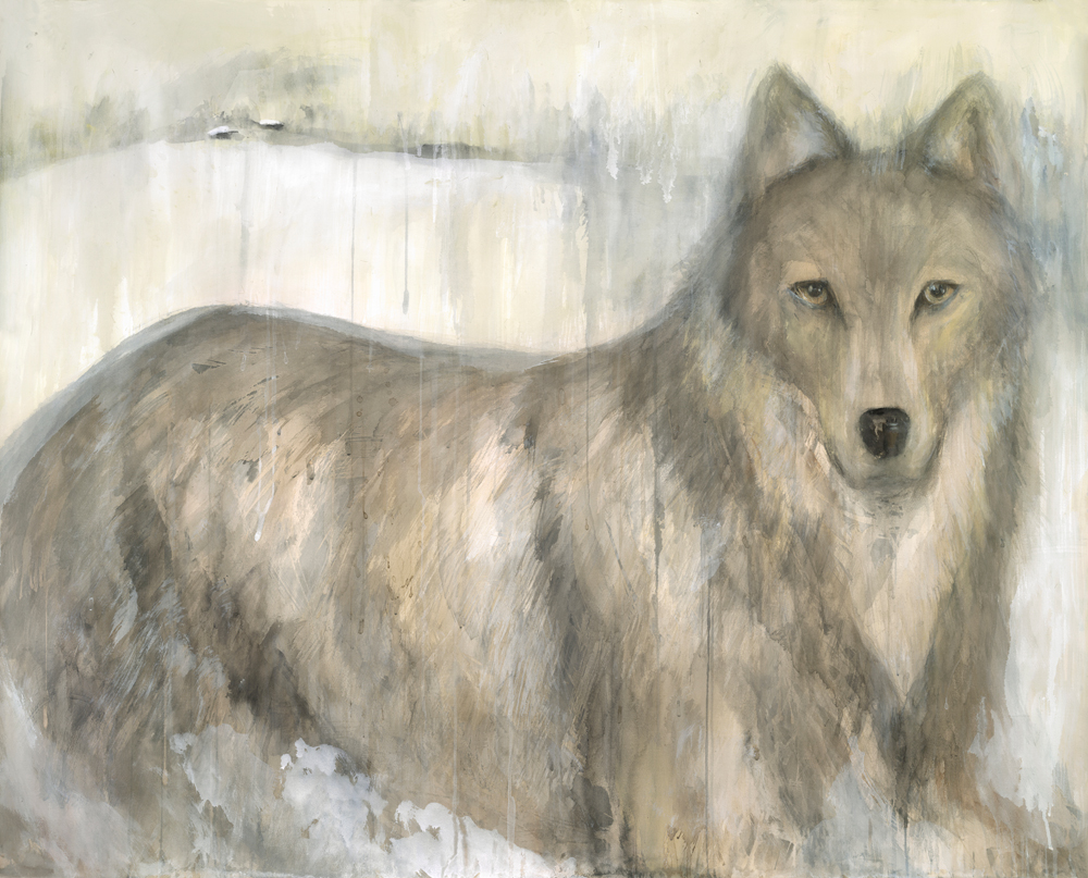 """Gray Wolf,"" 2012 Archival pigment print on clay ground on German etching paper 30 x 37 inches, Edition of 20"