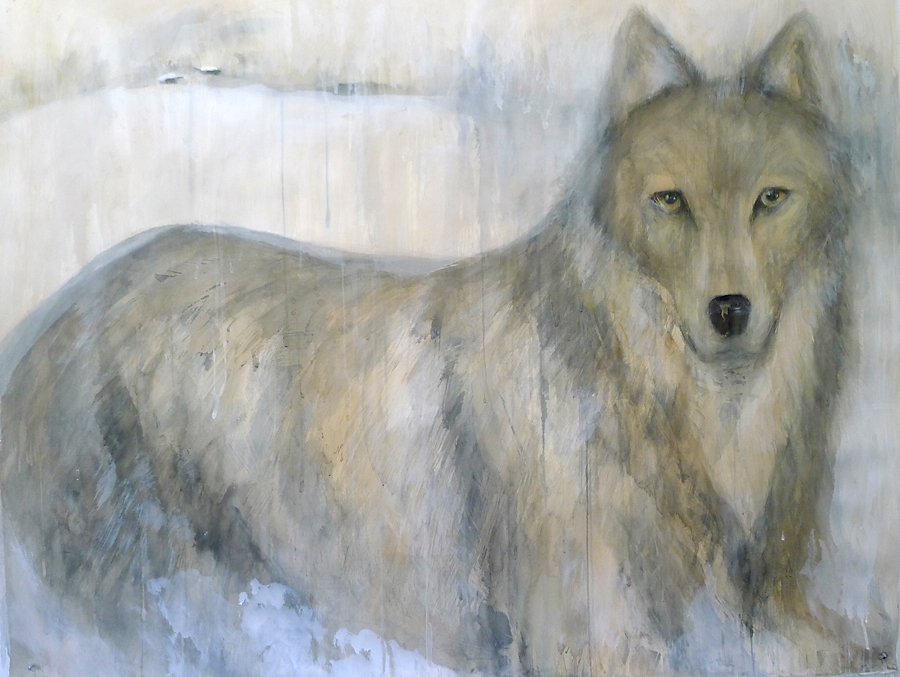 """Gray Wolf,"" 2012 Coffee, sumi-e ink and watercolor 42 x 52 inches"