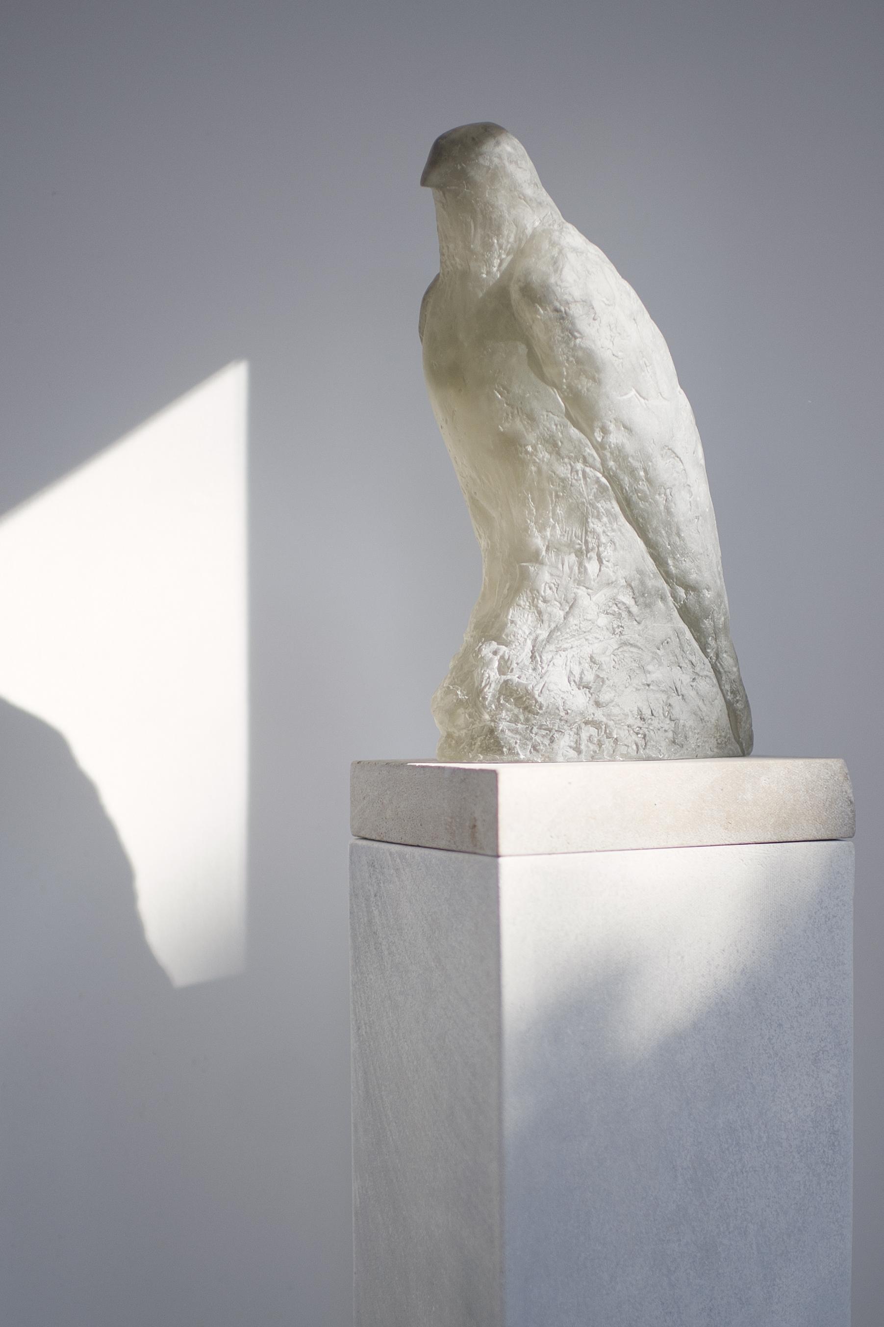 Grey Crystal Bird_4765a DT.jpg