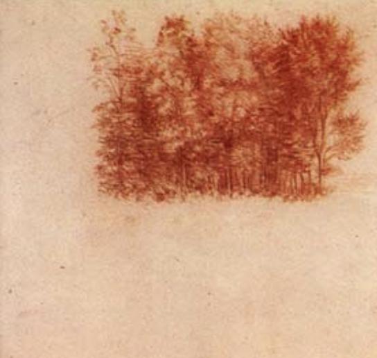 Copy of Leonardo Quotes