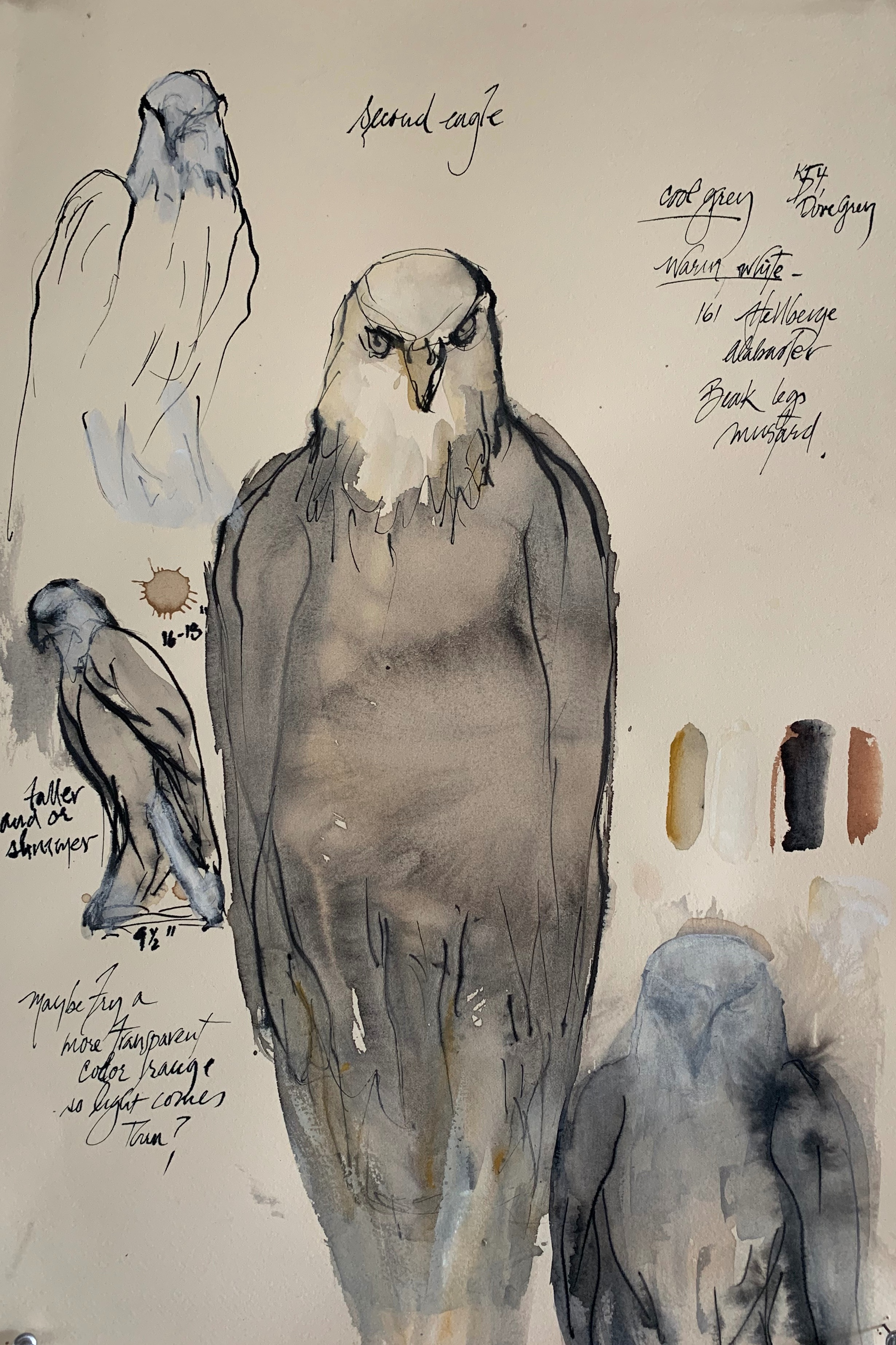 """Second Eagle Study,"" 2019  Ink, coffee and gouache 22 x 15 inches"