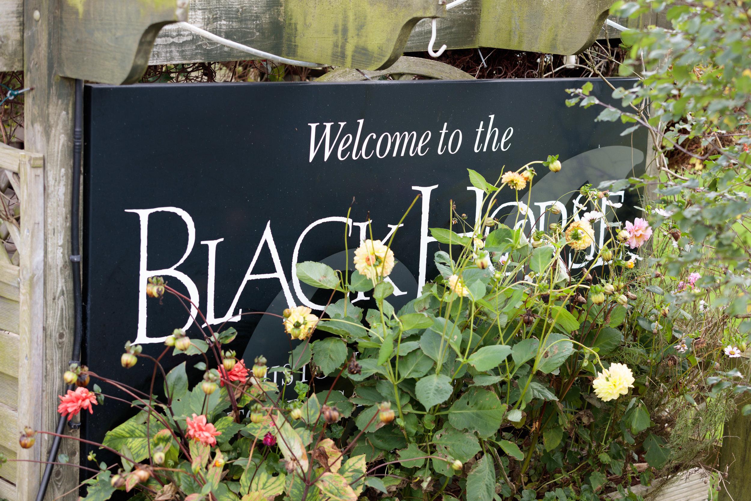 Black Horse Beamish Wedding
